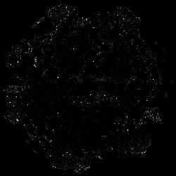 Naturkreislauf-logo-PNG-250